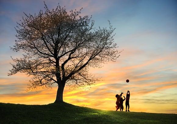 라이프 모델을 정립하라 - 자기, 가정, 관계, 직업
